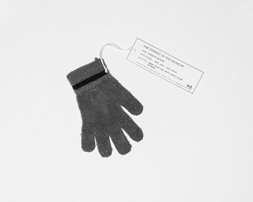 The Forest Is The Museum - Intellectual Property (glove)